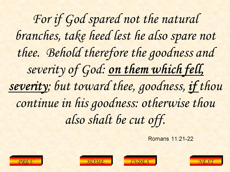 Romans 11:21-22 PREVHOMEINDEXNEXT For if God spared not the natural branches, take heed lest he also spare not thee.