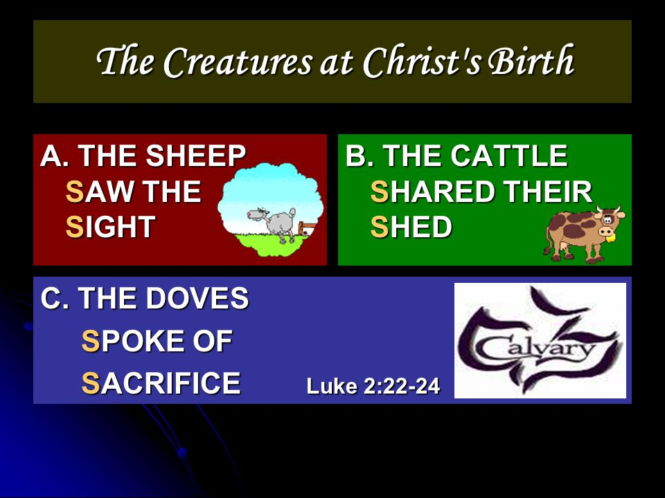 The Creatures at Christ s Birth A. THE SHEEP SAW THE SIGHT B.