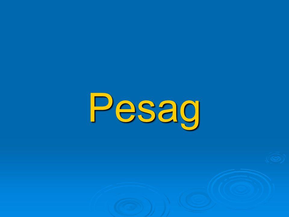 Pesag