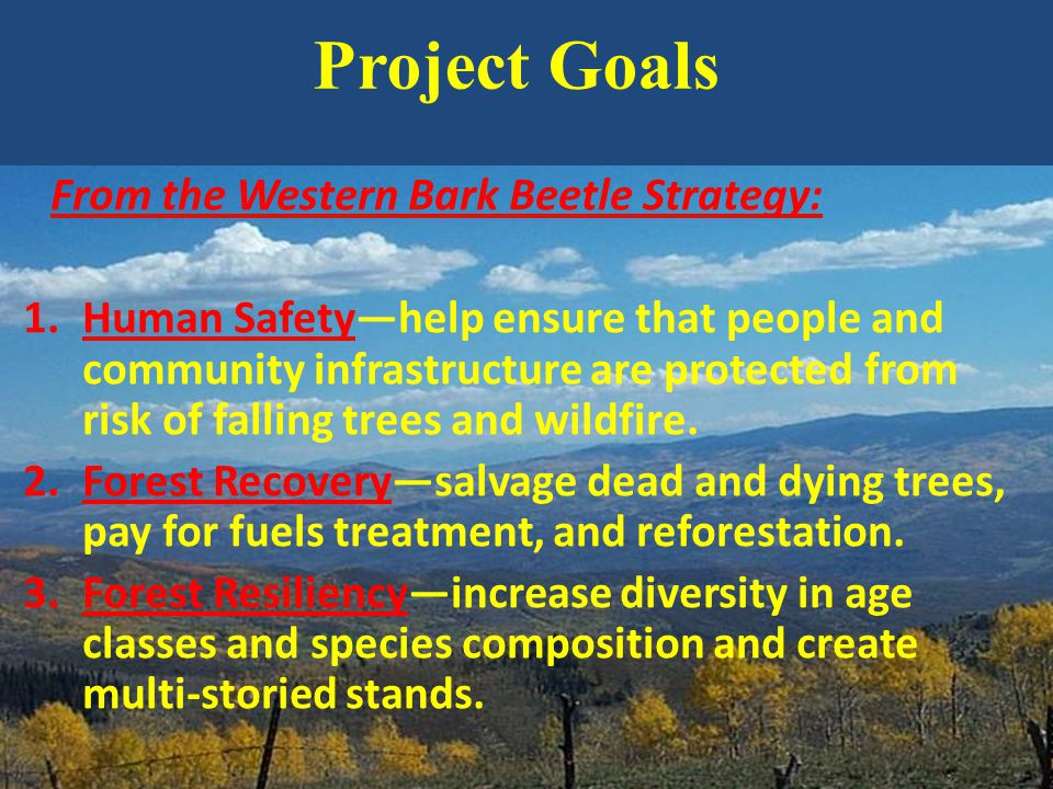 From the Western Bark Beetle Strategy: 1.Human Safety—help ensure that people and community infrastructure are protected from risk of falling trees and wildfire.