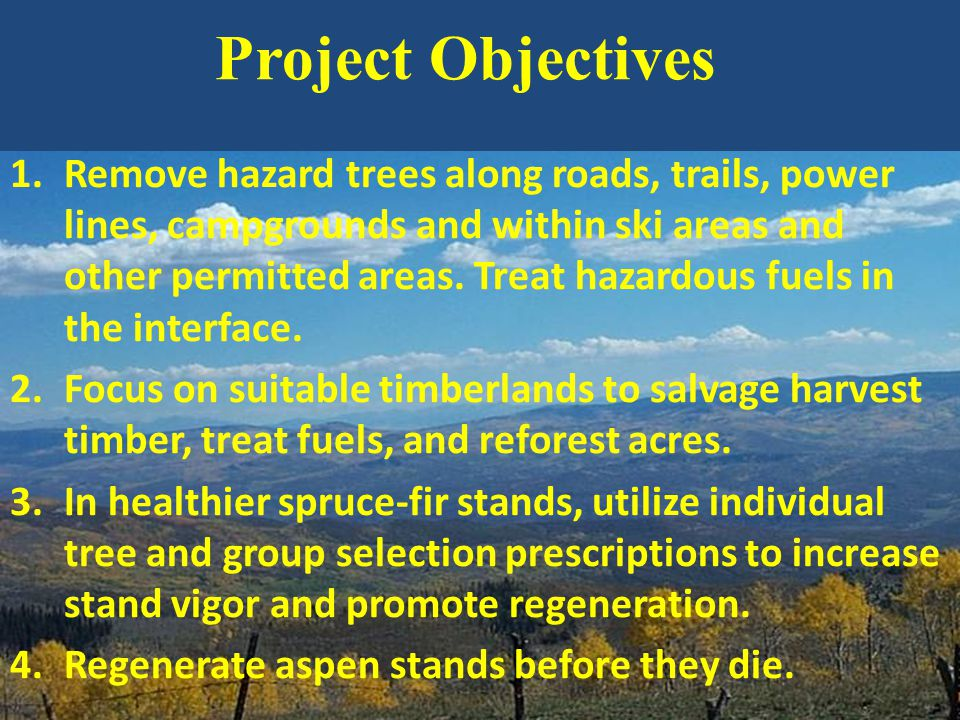 1.Remove hazard trees along roads, trails, power lines, campgrounds and within ski areas and other permitted areas. Treat hazardous fuels in the inter