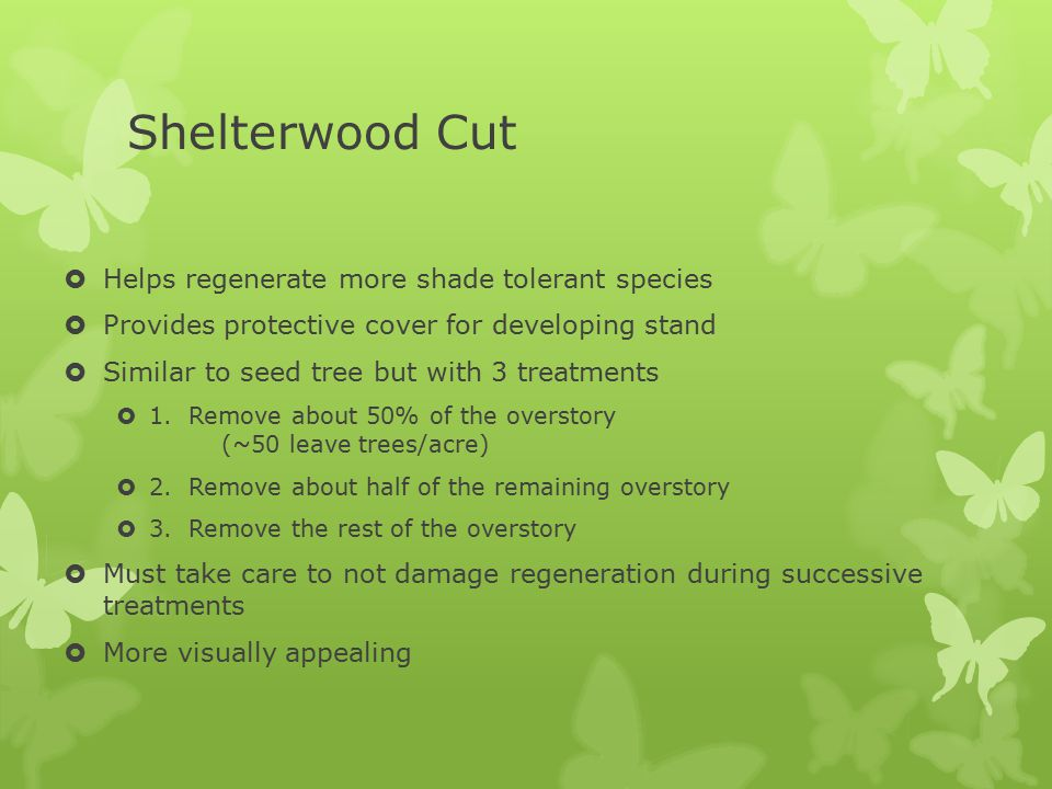 Shelterwood Cut  Helps regenerate more shade tolerant species  Provides protective cover for developing stand  Similar to seed tree but with 3 trea