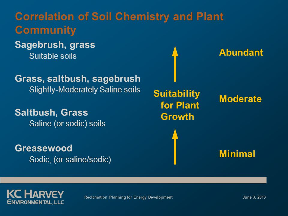 Reclamation Planning for Energy Development June 3, 2013 Correlation of Soil Chemistry and Plant Community Sagebrush, grass Suitable soils Grass, saltbush, sagebrush Slightly-Moderately Saline soils Saltbush, Grass Saline (or sodic) soils Greasewood Sodic, (or saline/sodic) Suitability for Plant Growth Abundant Moderate Minimal