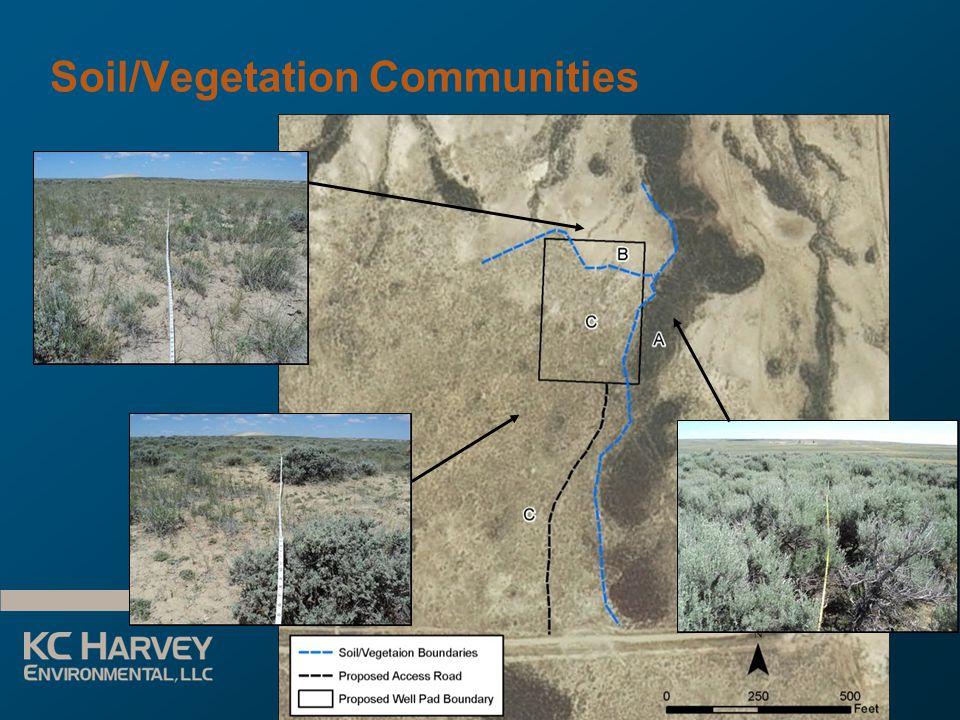Reclamation Planning for Energy Development June 3, 2013 Soil/Vegetation Communities