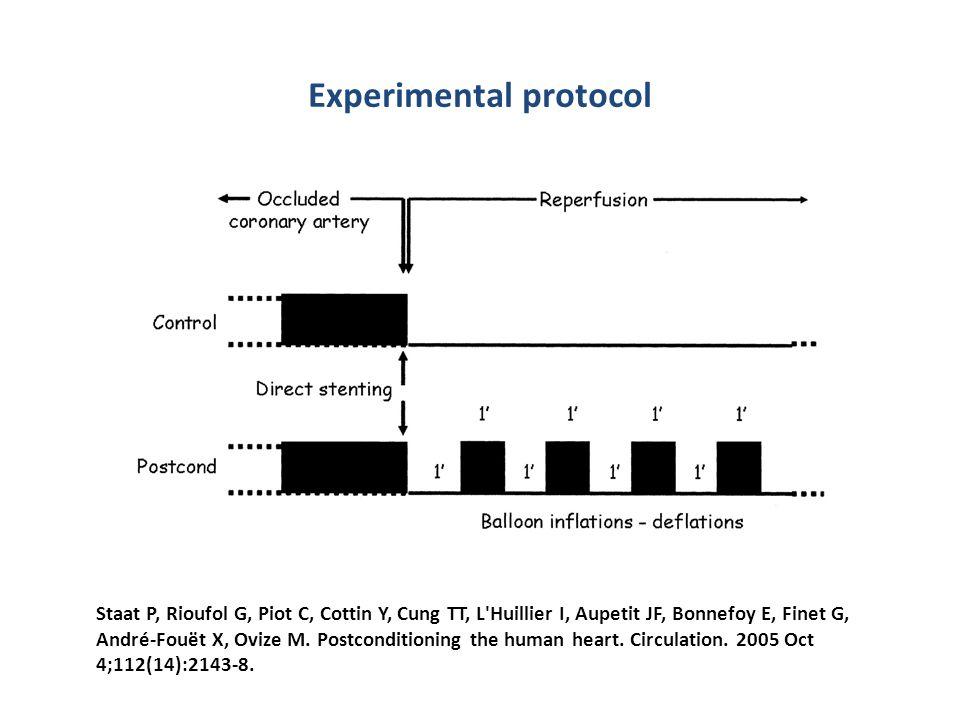 Experimental protocol Staat P, Rioufol G, Piot C, Cottin Y, Cung TT, L'Huillier I, Aupetit JF, Bonnefoy E, Finet G, André-Fouët X, Ovize M. Postcondit