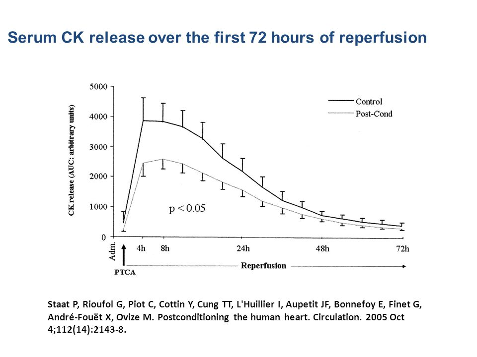 Serum CK release over the first 72 hours of reperfusion