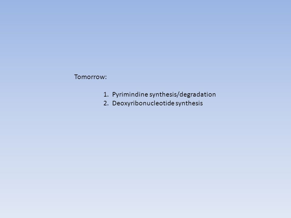 Tomorrow: 1. Pyrimindine synthesis/degradation 2. Deoxyribonucleotide synthesis