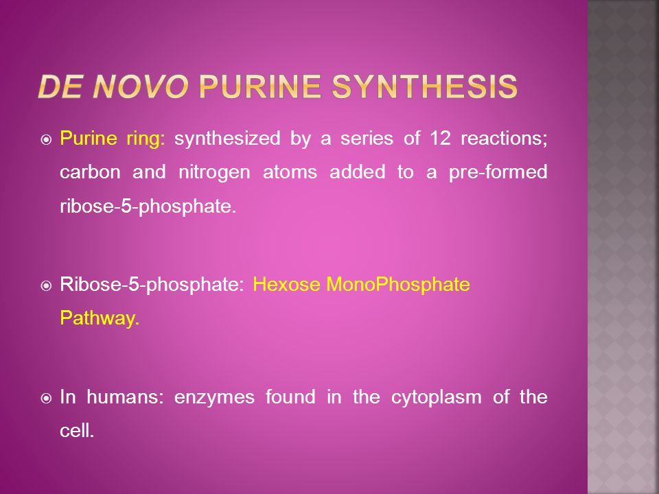  Purine ring: synthesized by a series of 12 reactions; carbon and nitrogen atoms added to a pre-formed ribose-5-phosphate.
