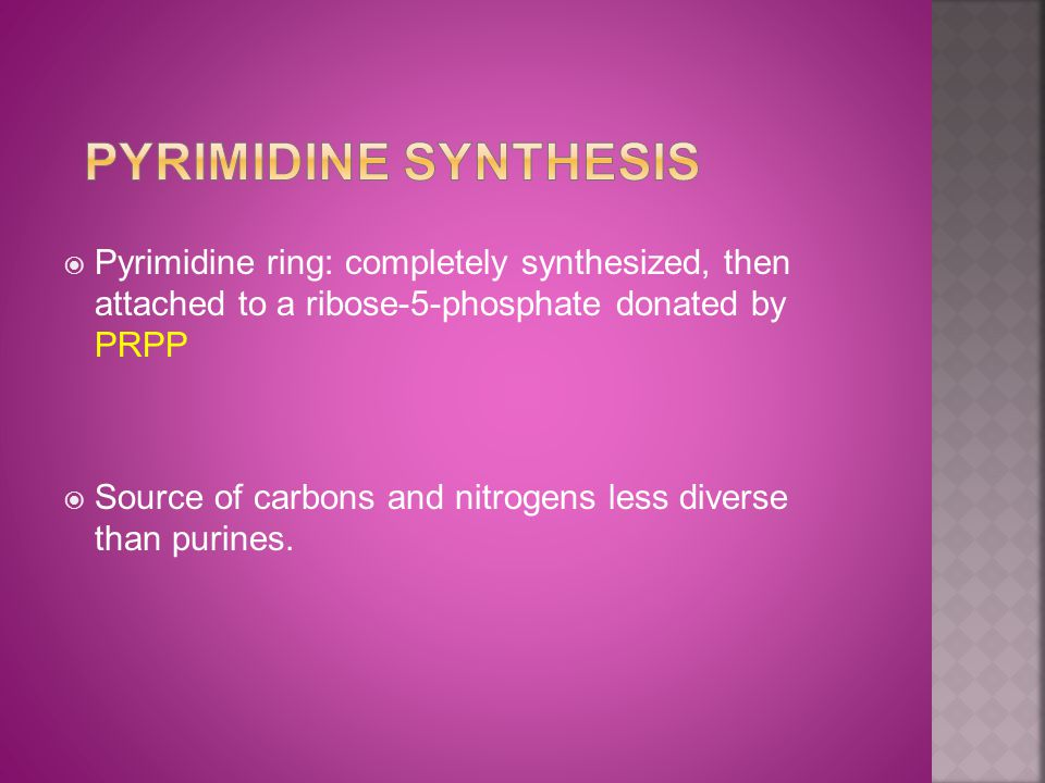  Pyrimidine ring: completely synthesized, then attached to a ribose-5-phosphate donated by PRPP  Source of carbons and nitrogens less diverse than purines.