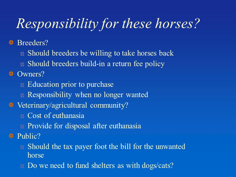 Responsibility for these horses. Breeders.