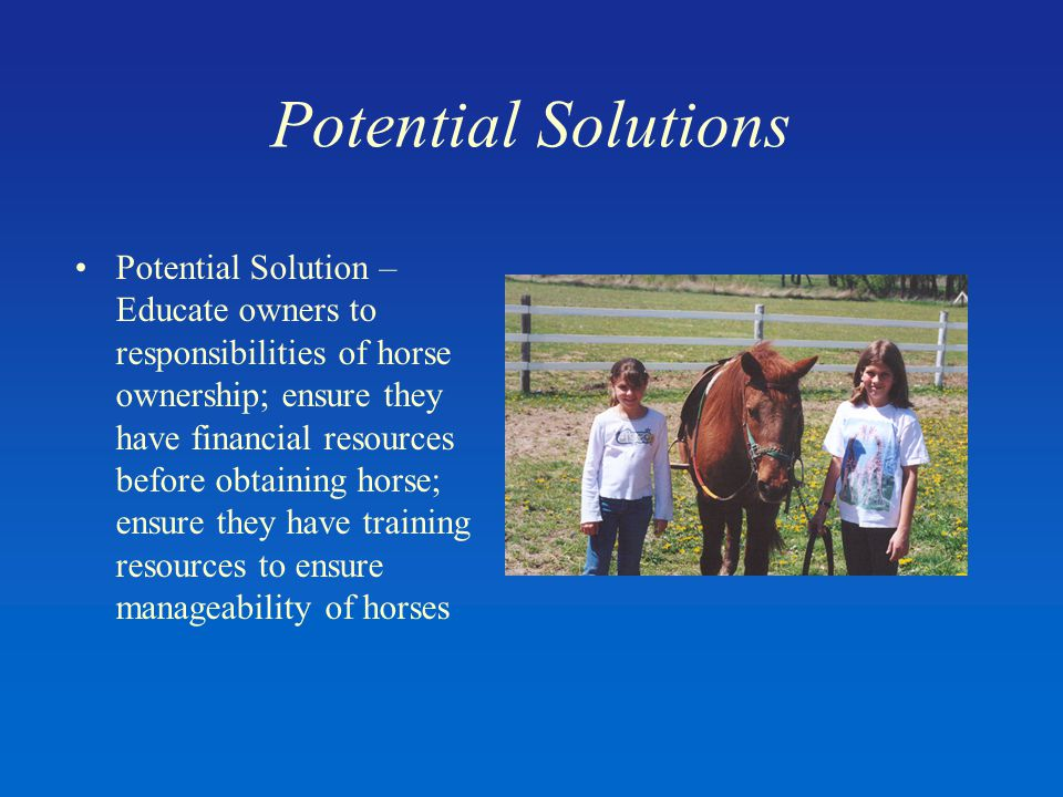 Potential Solutions Potential Solution – Educate owners to responsibilities of horse ownership; ensure they have financial resources before obtaining horse; ensure they have training resources to ensure manageability of horses
