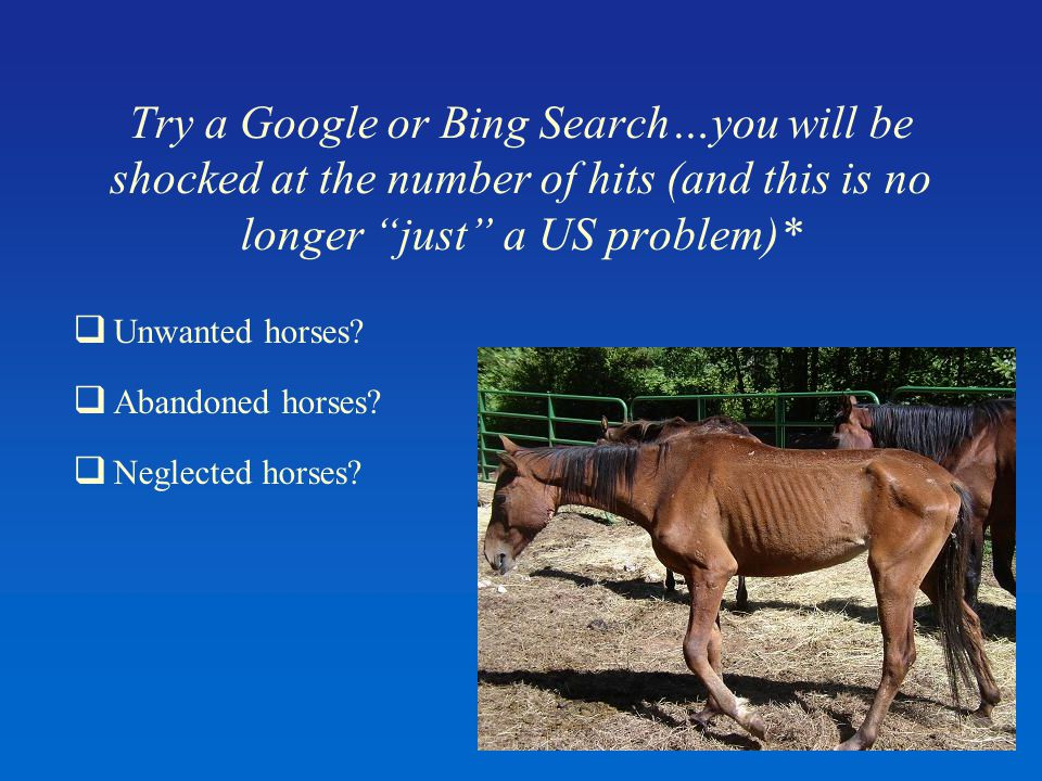 Try a Google or Bing Search…you will be shocked at the number of hits (and this is no longer just a US problem)*  Unwanted horses.