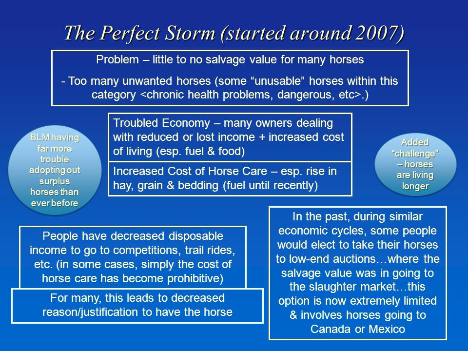 The Perfect Storm (started around 2007) Problem – little to no salvage value for many horses - Too many unwanted horses (some unusable horses within this category.) Troubled Economy – many owners dealing with reduced or lost income + increased cost of living (esp.