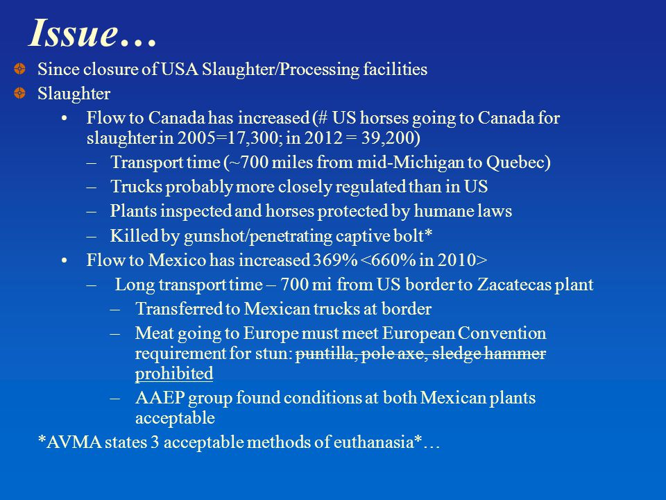Issue… Since closure of USA Slaughter/Processing facilities Slaughter Flow to Canada has increased (# US horses going to Canada for slaughter in 2005=17,300; in 2012 = 39,200) –Transport time (~700 miles from mid-Michigan to Quebec) –Trucks probably more closely regulated than in US –Plants inspected and horses protected by humane laws –Killed by gunshot/penetrating captive bolt* Flow to Mexico has increased 369% – Long transport time – 700 mi from US border to Zacatecas plant –Transferred to Mexican trucks at border –Meat going to Europe must meet European Convention requirement for stun: puntilla, pole axe, sledge hammer prohibited –AAEP group found conditions at both Mexican plants acceptable *AVMA states 3 acceptable methods of euthanasia*…