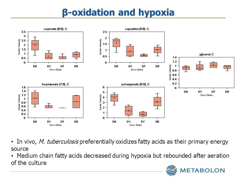 β-oxidation and hypoxia In vivo, M.