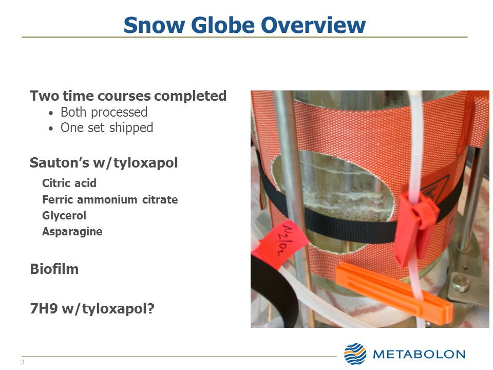 Snow Globe Overview 3 Two time courses completed Both processed One set shipped Sauton's w/tyloxapol Citric acid Ferric ammonium citrate Glycerol Asparagine Biofilm 7H9 w/tyloxapol