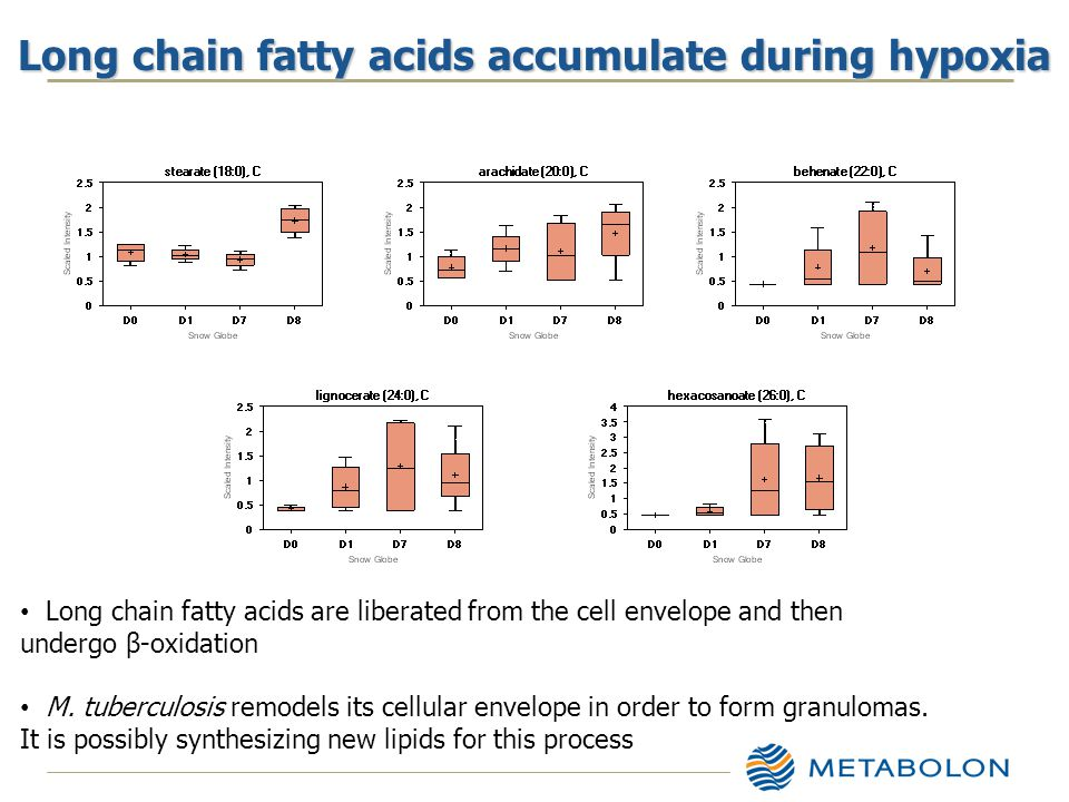 Long chain fatty acids accumulate during hypoxia Long chain fatty acids are liberated from the cell envelope and then undergo β-oxidation M.