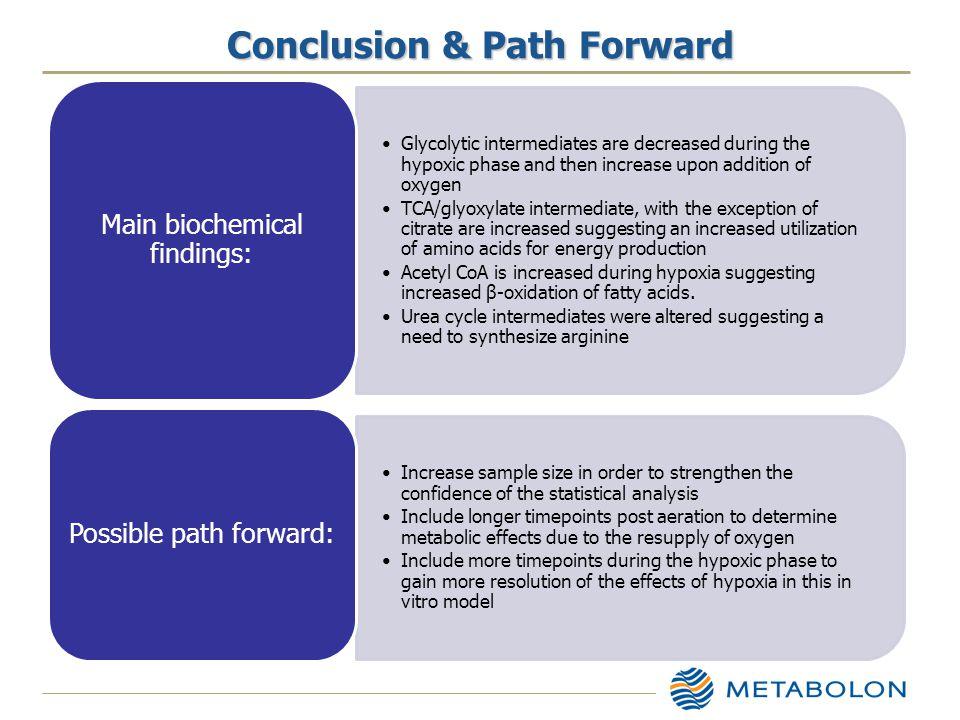 Conclusion & Path Forward