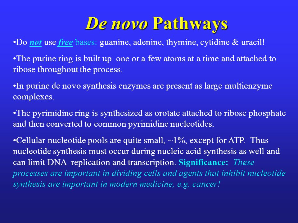 Pyrimidine Biosynthesis: Controls Voet, Voet & Pratt 2013 Figure 23.8 In animals pyrimidine biosynthesis is controlled by the activity of carbamoyl phosphate synthetase II.