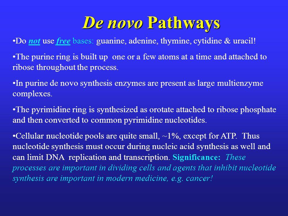 De novo Purine Synthesis: Origins of Ring Atoms Voet, Voet & Pratt 2008 Chap 23 p. 974