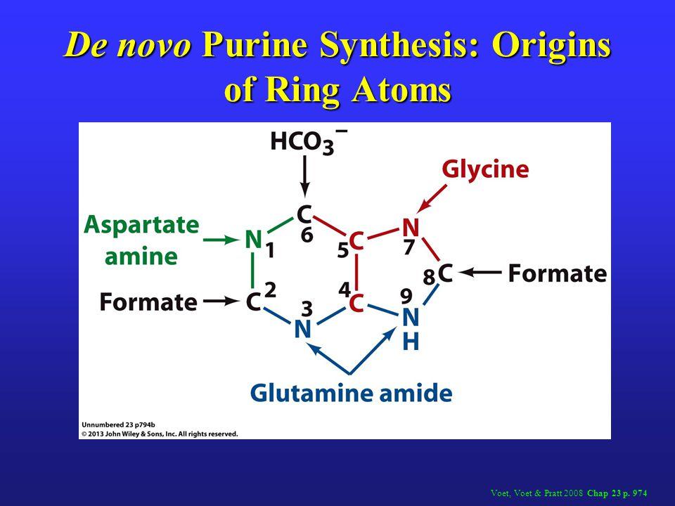 De Novo Synthesis of Purine Nucleotide 9: SAICAIR (adenylosuccinate) Lyase Rx Lehninger 2000 Figure 22.31i