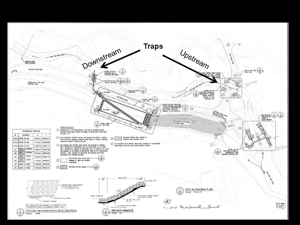 Traps Upstream Downstream