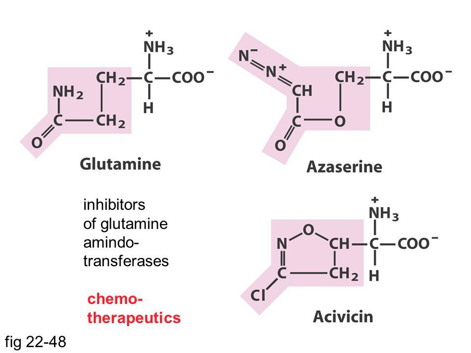 fig 22-48 inhibitors of glutamine amindo- transferases chemo- therapeutics