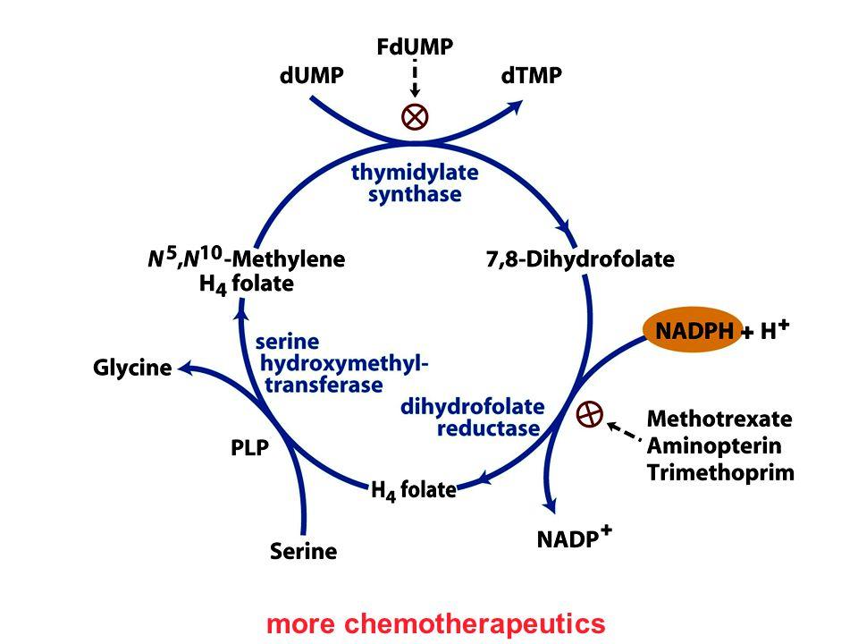 more chemotherapeutics