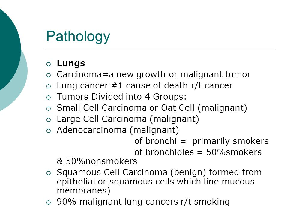 Pathology  All tumor types with the exception of small cell (oat cell), have a good prognosis with medical and or surgical intervention  Surgical Interventions include:  Wedge/Tumor Resection with margins  Lobectomy  Pneumonectomy  Medical Interventions include:  Chemotherapy  Radiation