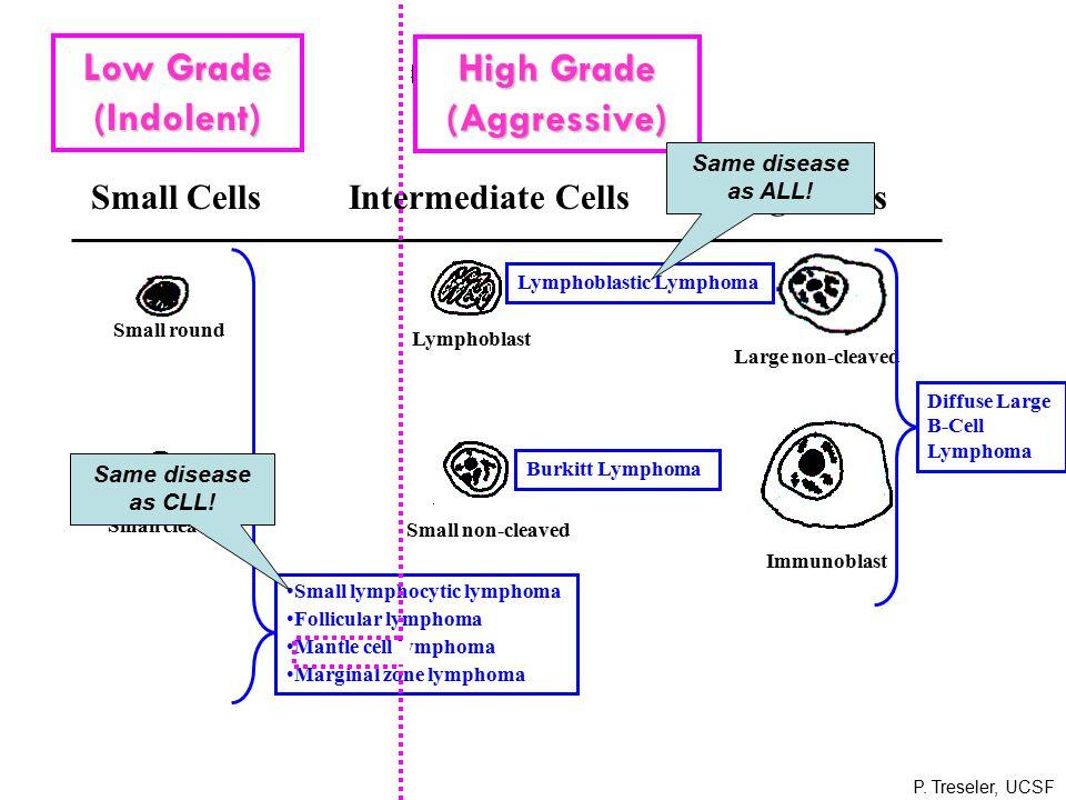 Small CellsIntermediate CellsLarge Cells Small round Lymphoblast Large non-cleaved Small cleaved Histiocyte Immunoblast Small non-cleaved Small lymphocytic lymphoma Follicular lymphoma Mantle cell lymphoma Marginal zone lymphoma Lymphoblastic Lymphoma Burkitt Lymphoma Diffuse Large B-Cell Lymphoma Low Grade (Indolent) High Grade (Aggressive) Same disease as ALL.