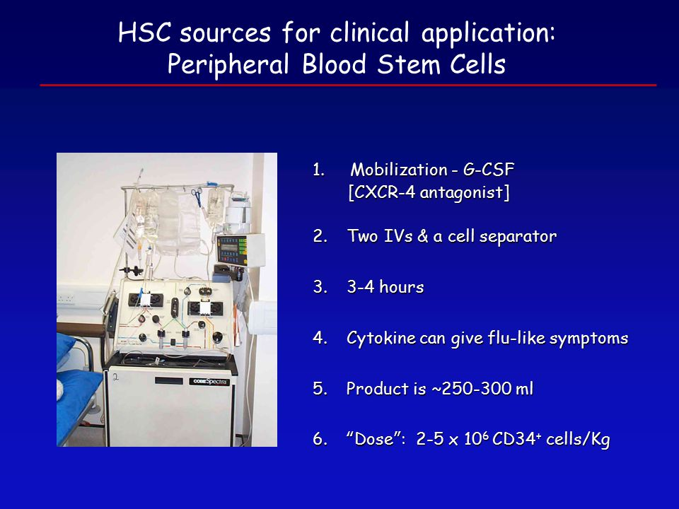 HSC sources for clinical application: Peripheral Blood Stem Cells 1.