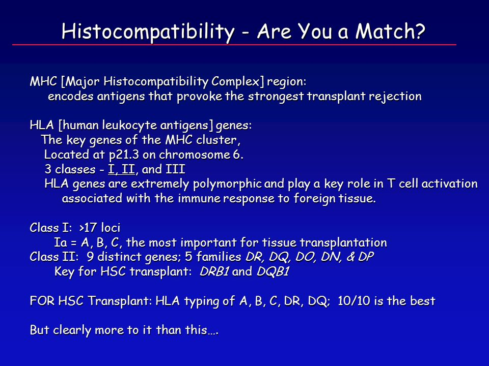 MHC [Major Histocompatibility Complex] region: encodes antigens that provoke the strongest transplant rejection encodes antigens that provoke the strongest transplant rejection HLA [human leukocyte antigens] genes: The key genes of the MHC cluster, The key genes of the MHC cluster, Located at p21.3 on chromosome 6.