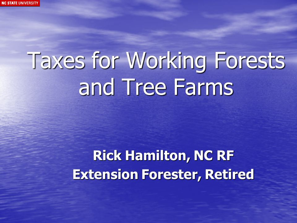 Income Tax Implications 1.Timber Sales and Basis 2.