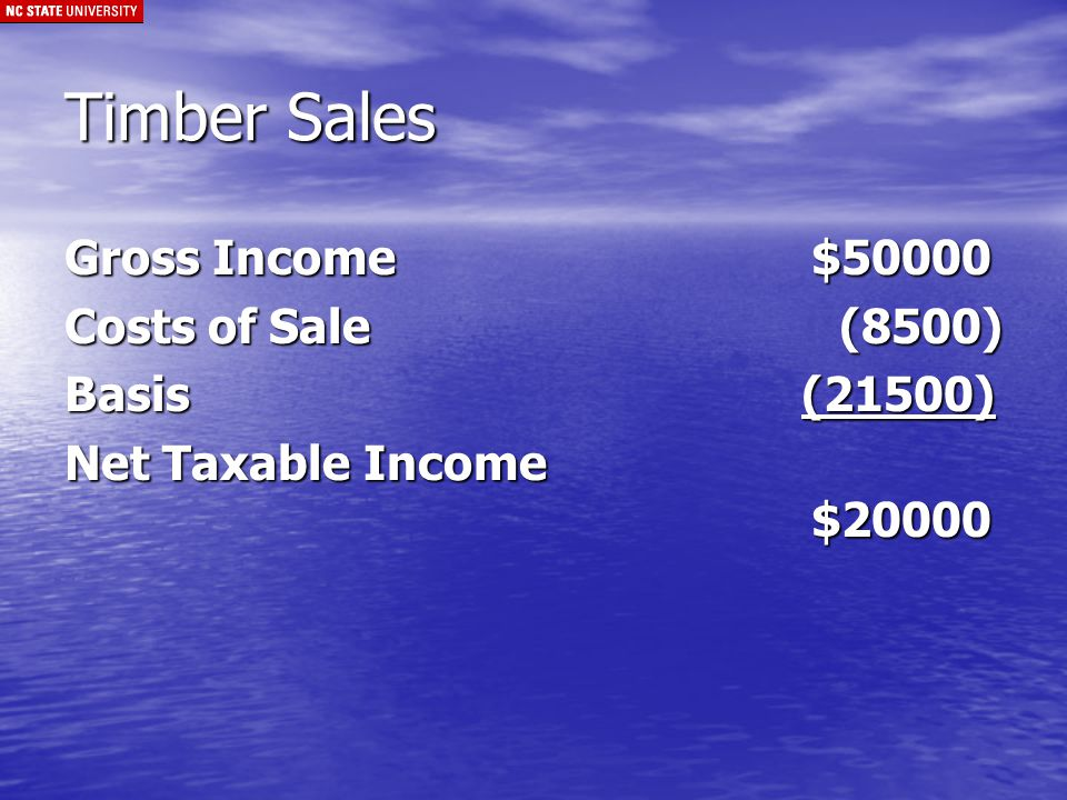 Timber Sale (cont.) Net Taxable Income$20000 Long-Term Capital Gains (LTCG) 1 Year Holding Period For Both Investors and Businesses Report on Schedule D (Investors) Report on 4797 (Business)