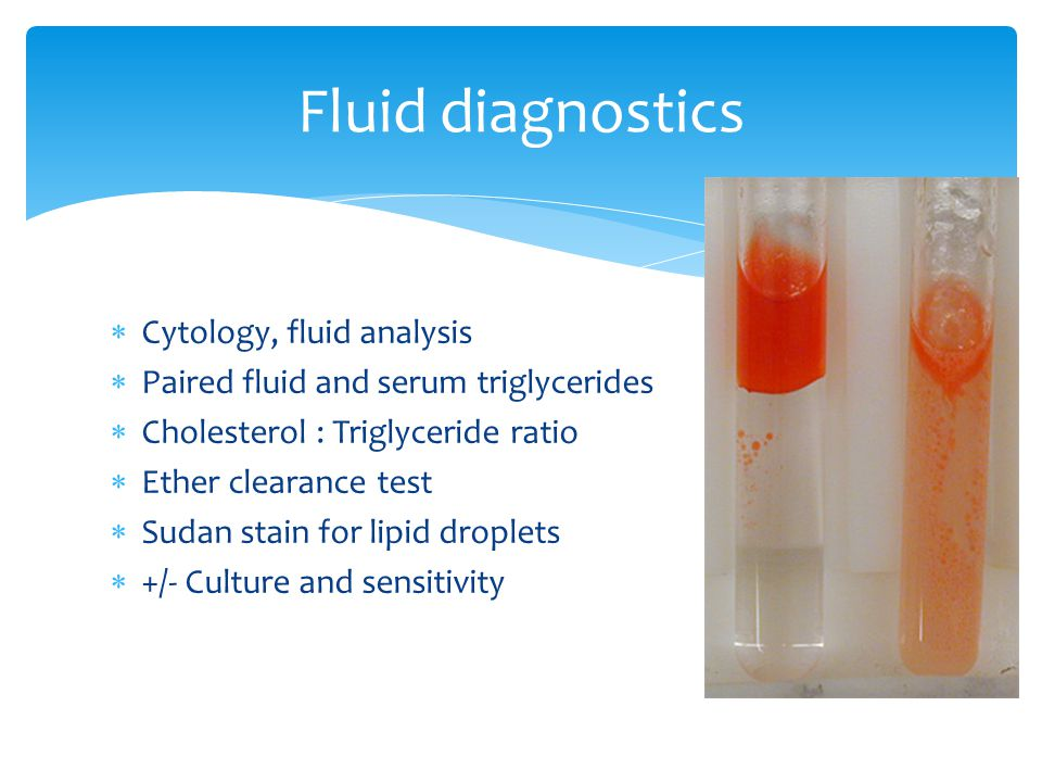  Cytology, fluid analysis  Paired fluid and serum triglycerides  Cholesterol : Triglyceride ratio  Ether clearance test  Sudan stain for lipid droplets  +/- Culture and sensitivity Fluid diagnostics
