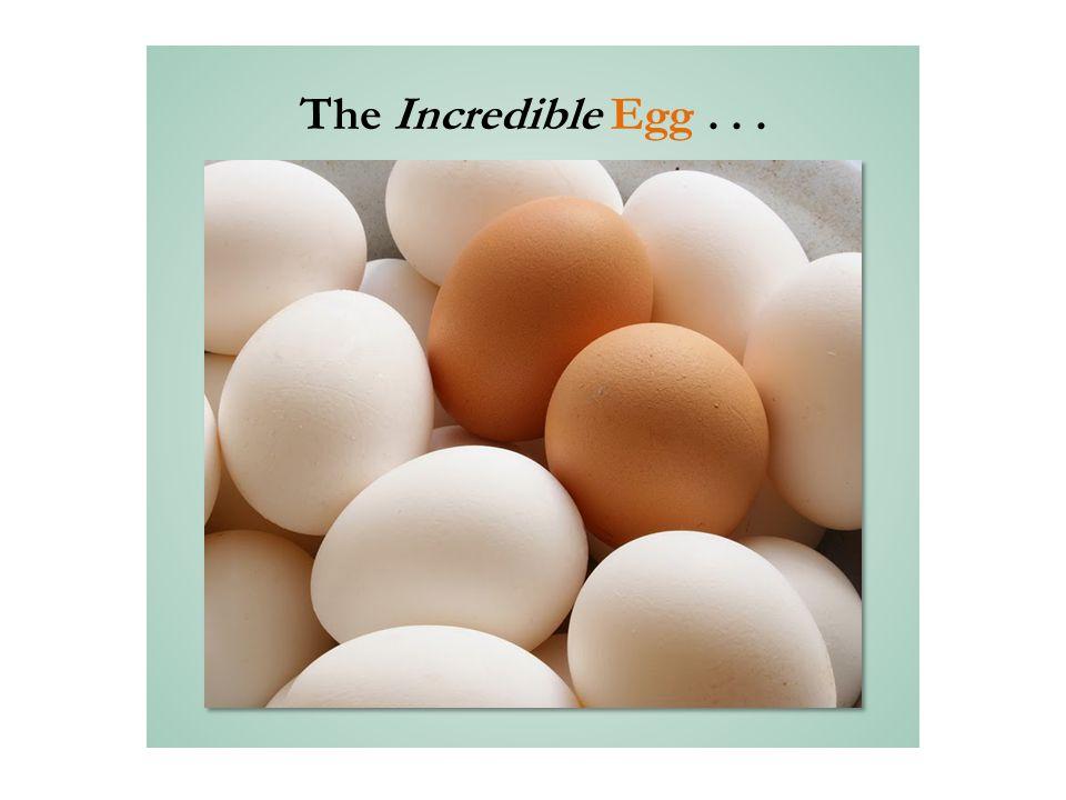 The Incredible Egg...