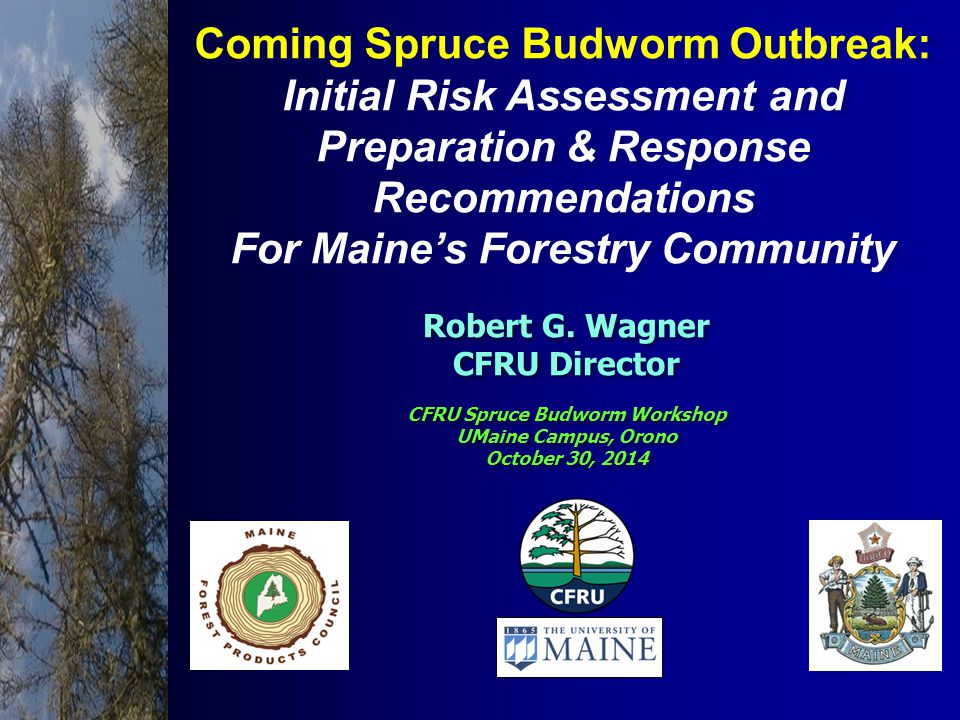 Coming Spruce Budworm Outbreak: Initial Risk Assessment and Preparation & Response Recommendations For Maine's Forestry Community Coming Spruce Budworm Outbreak: Initial Risk Assessment and Preparation & Response Recommendations For Maine's Forestry Community CFRU Spruce Budworm Workshop UMaine Campus, Orono October 30, 2014 CFRU Spruce Budworm Workshop UMaine Campus, Orono October 30, 2014 Robert G.