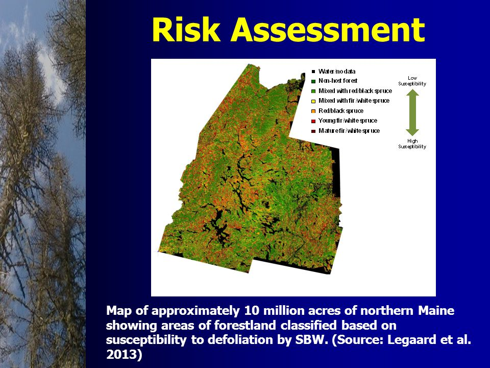 Risk Assessment Map of approximately 10 million acres of northern Maine showing areas of forestland classified based on susceptibility to defoliation by SBW.