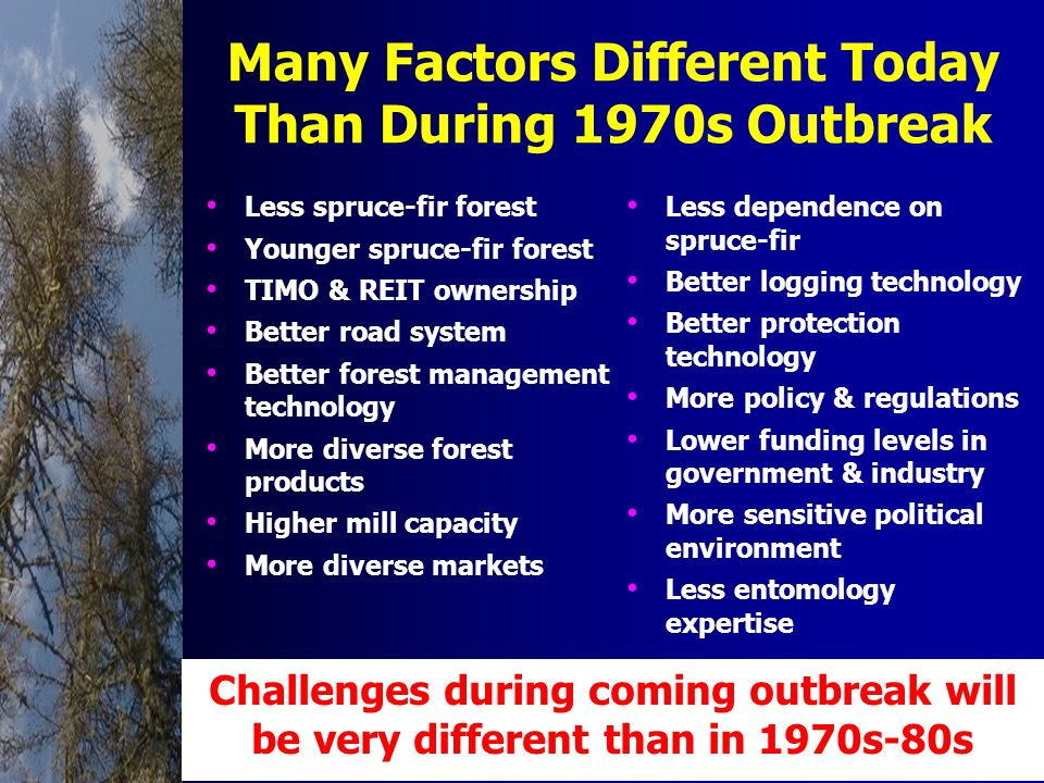 Many Factors Different Today Than During 1970s Outbreak Less spruce-fir forest Younger spruce-fir forest TIMO & REIT ownership Better road system Better forest management technology More diverse forest products Higher mill capacity More diverse markets Less dependence on spruce-fir Better logging technology Better protection technology More policy & regulations Lower funding levels in government & industry More sensitive political environment Less entomology expertise Challenges during coming outbreak will be very different than in 1970s-80s