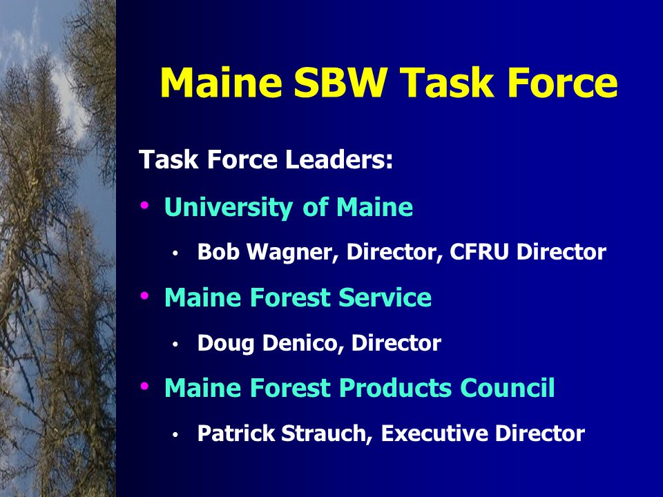 Maine SBW Task Force Task Force Leaders: University of Maine Bob Wagner, Director, CFRU Director Maine Forest Service Doug Denico, Director Maine Forest Products Council Patrick Strauch, Executive Director