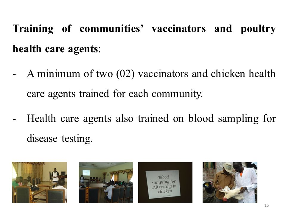 Training of communities' vaccinators and poultry health care agents: -A minimum of two (02) vaccinators and chicken health care agents trained for each community.