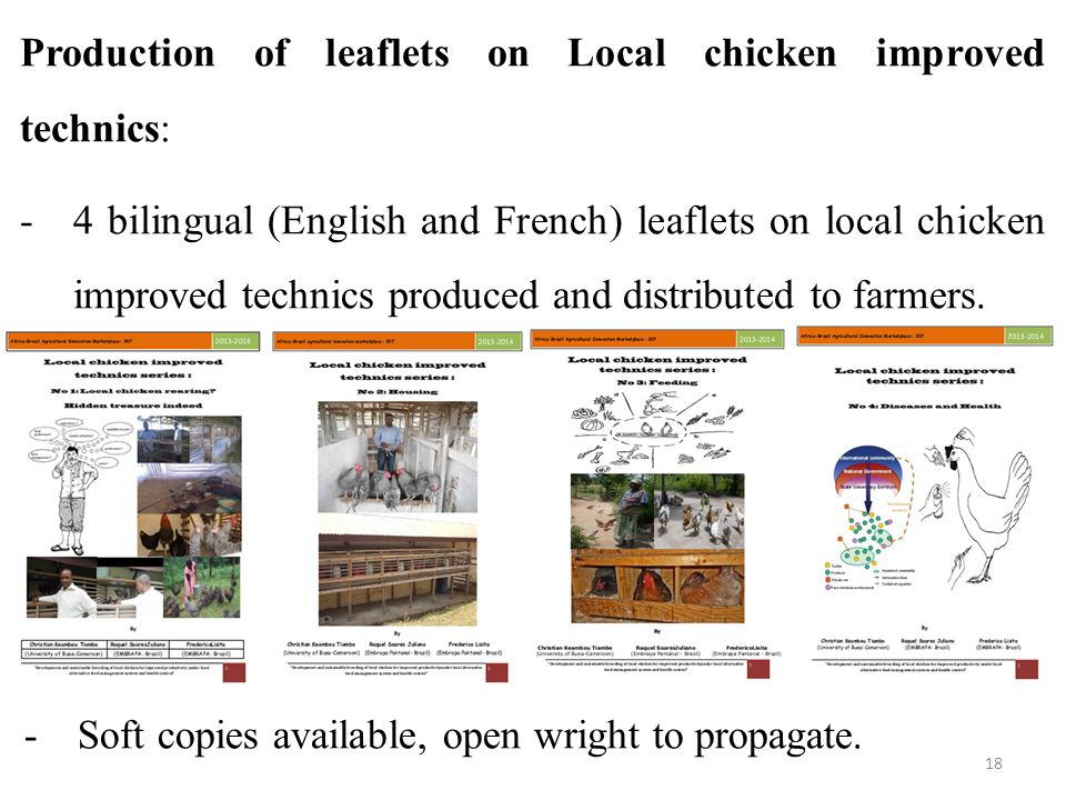 Production of leaflets on Local chicken improved technics: -4 bilingual (English and French) leaflets on local chicken improved technics produced and distributed to farmers.
