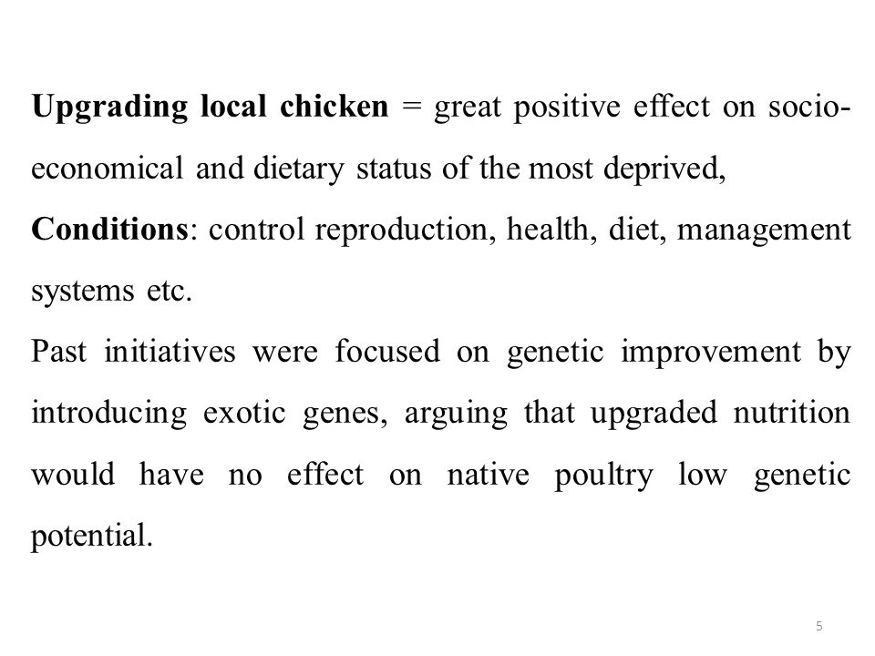 Upgrading local chicken = great positive effect on socio- economical and dietary status of the most deprived, Conditions: control reproduction, health, diet, management systems etc.