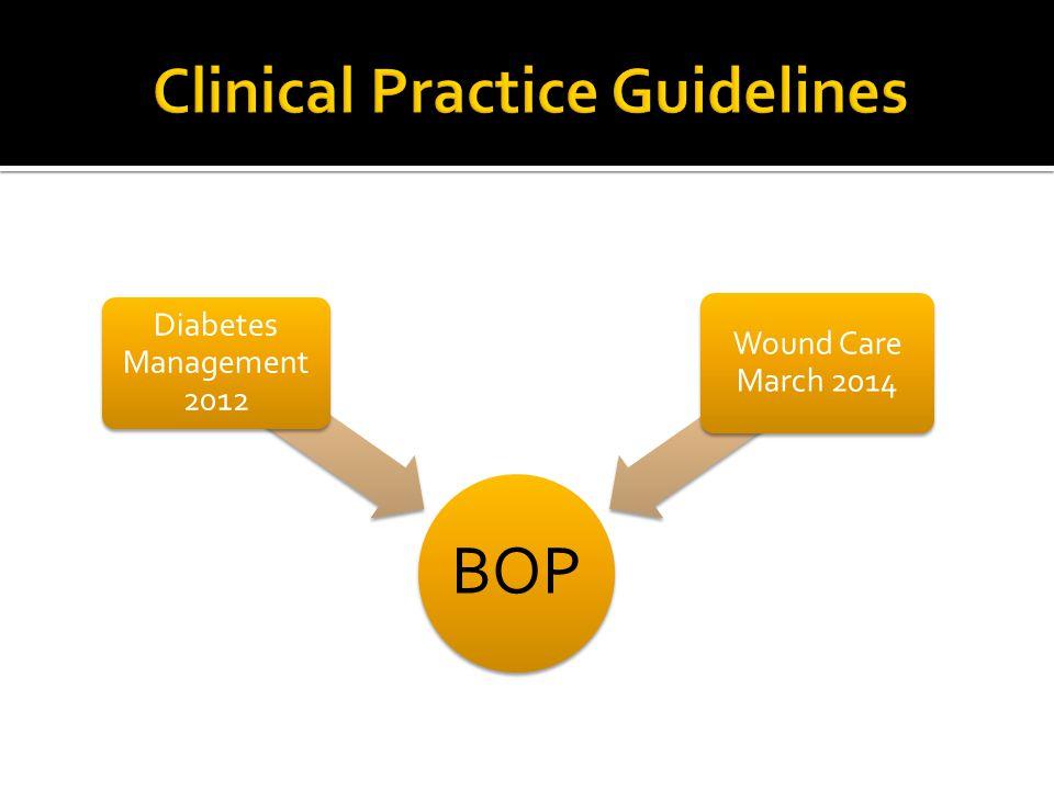 BOP Diabetes Management 2012 Wound Care March 2014