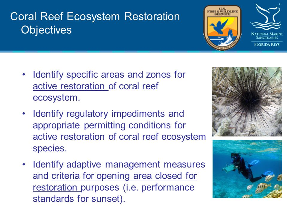 Coral Reef Ecosystem Restoration Objectives Identify specific areas and zones for active restoration of coral reef ecosystem.