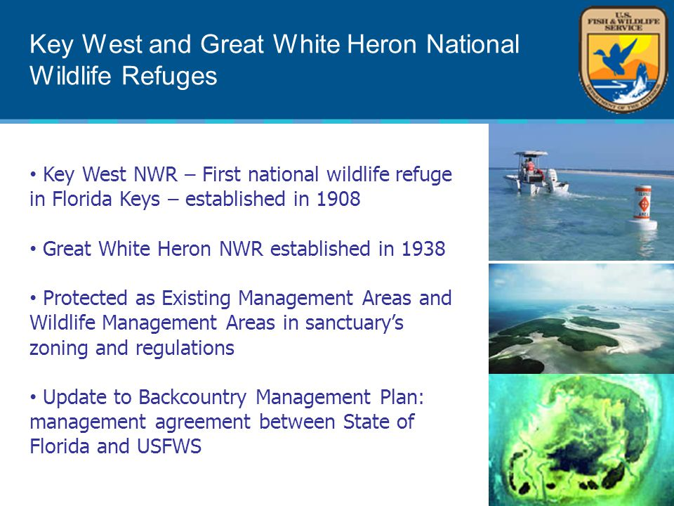 Key West and Great White Heron National Wildlife Refuges Key West NWR – First national wildlife refuge in Florida Keys – established in 1908 Great White Heron NWR established in 1938 Protected as Existing Management Areas and Wildlife Management Areas in sanctuary's zoning and regulations Update to Backcountry Management Plan: management agreement between State of Florida and USFWS