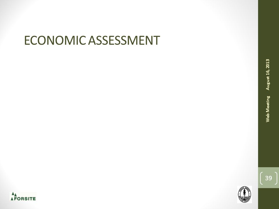 ECONOMIC ASSESSMENT August 16, 2013 Web Meeting 39