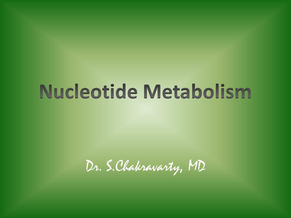 Dr. S.Chakravarty, MD