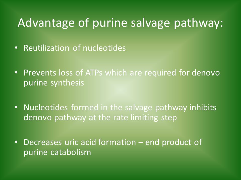 Advantage of purine salvage pathway: Reutilization of nucleotides Prevents loss of ATPs which are required for denovo purine synthesis Nucleotides formed in the salvage pathway inhibits denovo pathway at the rate limiting step Decreases uric acid formation – end product of purine catabolism