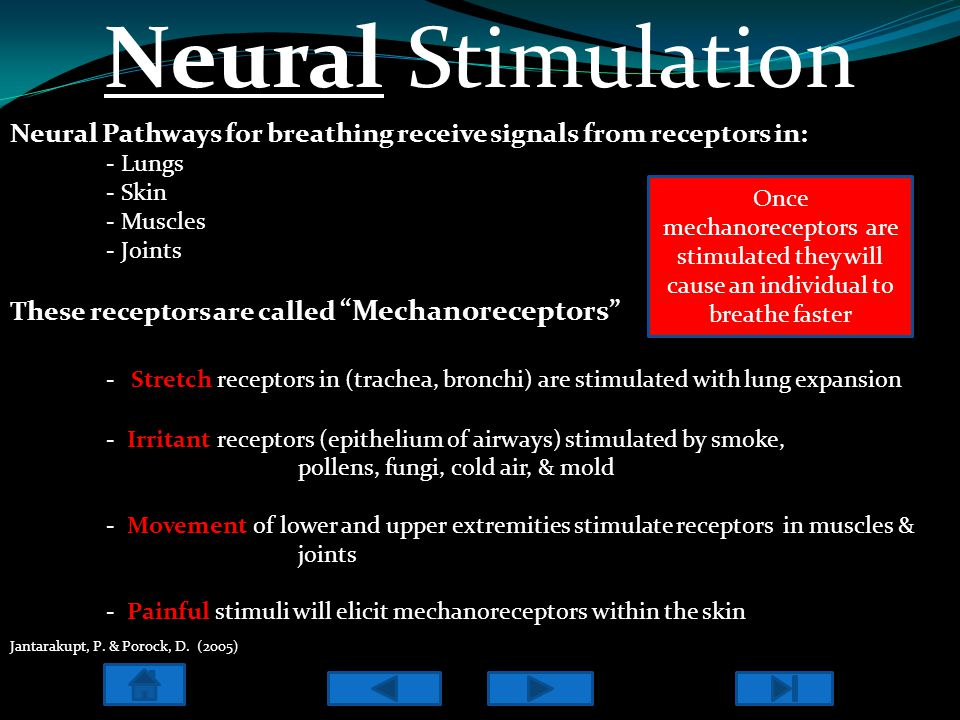 "Neural Stimulation Neural Pathways for breathing receive signals from receptors in: - Lungs - Skin - Muscles - Joints These receptors are called ""Mech"